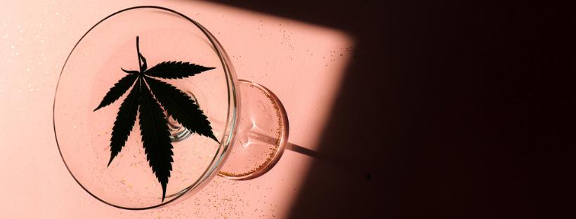 How To Make Cannabis-Infused Lemonade